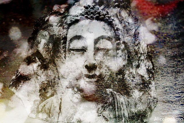 Buddha Dreaming